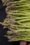 Freshly harvested organic asparagus Stock Images