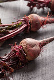 Freshly harvested organic beets. On a dark wooden background Stock Images