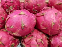 Dragon fruits. Freshly harvested organic dragon fruits on display for sale at local farmer& x27;s market departmental store royalty free stock photo