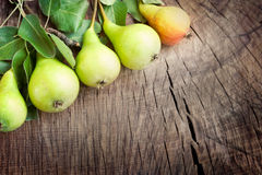 Freshly harvested pears Royalty Free Stock Images