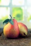 Freshly harvested pears Stock Photos