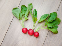 Freshly Harvested Raddish. Freshly harvested radish on aged wooden background Royalty Free Stock Photos