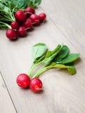 Freshly Harvested Raddish Stock Photo