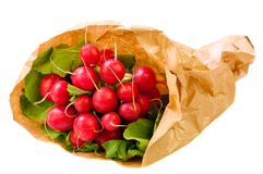 Freshly harvested radishes Stock Photography