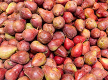 Freshly harvested red bartlett pears on display Royalty Free Stock Photo