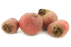 Freshly harvested red beet roots Royalty Free Stock Image