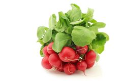 Freshly harvested red radish with green foliage Stock Photo