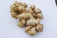 Freshly Reaped Ginger Root royalty free stock images