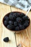 Freshly harvested ripe blackberries Stock Photos