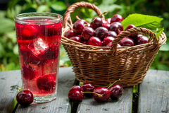 Freshly harvested sweet cherries and juice from them with ice Royalty Free Stock Photos