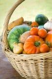 Freshly harvested vegetables Royalty Free Stock Photo