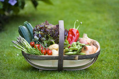 Freshly harvested vegetables Royalty Free Stock Photography