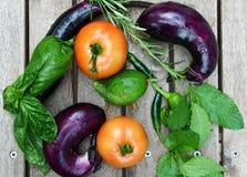 Freshly harvested vegetables of Brinjal or Eggplant, tomatoes, Stock Image