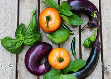 Freshly harvested vegetables of Brinjal or Eggplant, tomatoes,an Royalty Free Stock Image