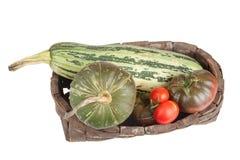 Freshly harvested vegetables in the old basket Stock Image