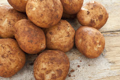 Freshly harvested whole fresh potatoes Stock Photography