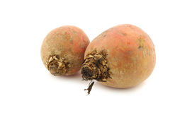 Freshly harvested yellow beets Royalty Free Stock Image