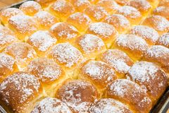 Freshly hot baked butter bread on tray sprinkle with icing sugar Royalty Free Stock Image