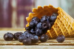 Freshly blueberries in the range of waffle cone. Juicy and fresh blueberries on rustic table. Freshly Juicy blueberries in the range of waffle cone. on rustic royalty free stock photo