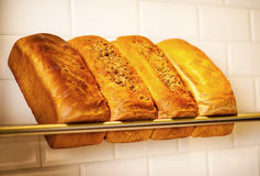 Freshly kneaded grain and white breads for sale Stock Image