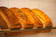 Freshly kneaded grain and white breads for sale Royalty Free Stock Image