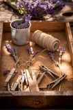 Freshly lavender preparation for home drying in garden. On wooden table stock photography