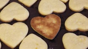 Freshly made biscuit cookies lie on a baking sheet and cool. Cookies in the shape of a heart and flowers. One is upside down, the. Ruddy side of the cookie is stock footage