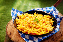Freshly made bowl of spaetzle Stock Photography