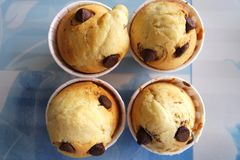 Freshly Made Chocolate Chip Vanilla Cup Cakes Stock Image