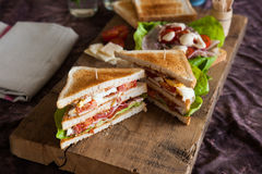 Freshly made clubsandwich Stock Photography