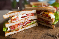 Freshly made clubsandwich Royalty Free Stock Photos