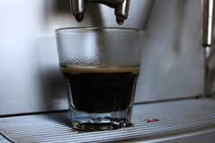 Freshly made espresso with a foam on the machine in coffee shop or cafe. Freshly made espresso with a foam from a coffee machine in a cafe stock photos