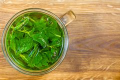 Mint tea on the table. Freshly made mint tea on the wooden table royalty free stock images