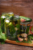 Freshly made pickled cucumbers in jars Royalty Free Stock Photography