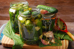 Freshly made pickled cucumbers in jars Stock Photography