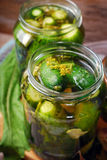 Freshly made pickled cucumbers in jars Royalty Free Stock Images