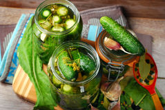 Freshly made pickled cucumbers in jars Stock Photo
