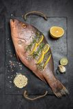 Freshly marinated raw Red snapper fish with lemon slices, garlic. And rosemary herbs, on dark background. Vertical composition Royalty Free Stock Photos