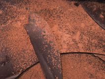 Freshly melted chocolate leaves. Leaves of tasty freshly melted chocolate. Pulverized with a little cocoa. Italy stock image