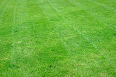 Freshly mowed grass in a diagonal pattern on an American Home La Stock Images