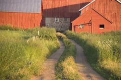 Freshly Painted Dairy Farm and Old Barn. Old barn glowing a bright red from recently being painted. This is a scene of a Wisconsin dairy farm Royalty Free Stock Photo