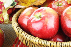 Freshly Picked Apples Royalty Free Stock Images