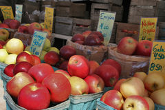 Freshly picked apples on display at a farmers market Royalty Free Stock Images