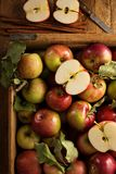 Freshly picked apples in a wooden crate. Overhead shot Royalty Free Stock Images