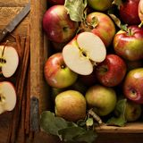 Freshly picked apples in a wooden crate. Overhead shot Royalty Free Stock Photo