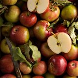 Freshly picked apples in a wooden crate. Overhead shot Stock Image