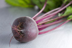 Freshly picked beetroot on white wood Royalty Free Stock Photography