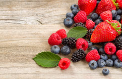 Freshly picked berries on rustic wooden boards. Close up of fresh berries on aged wooden boards Stock Photos