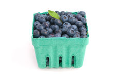 Freshly Picked Blueberries in a Basket on White Royalty Free Stock Photos