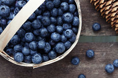 Freshly picked blueberries in a basket Stock Image
